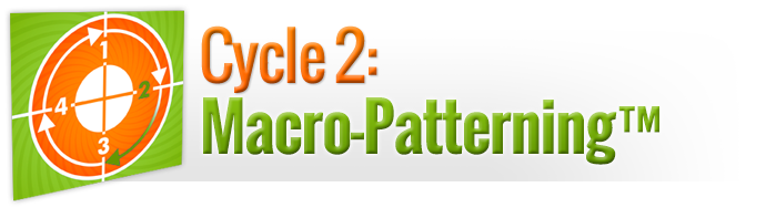 Cycle 2: Macro-Patterning™