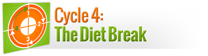 Cycle 4: The Diet Break